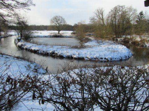 uitzicht winter 27-1-2014 eerste sneeuw deze winter